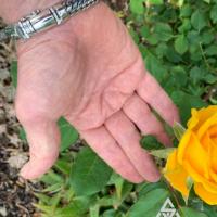 Chunky Woven Snake Sterling Silver Bracelet worn by Jeff from USA